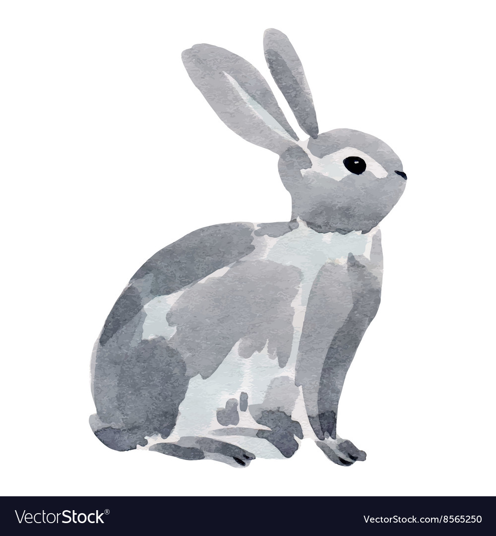 Watercolor a rabbit