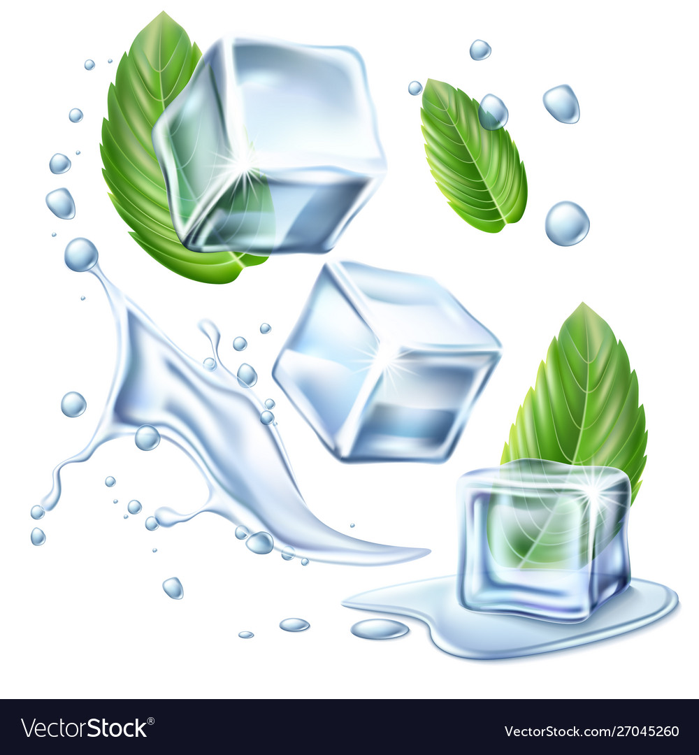Realistic ice cubes mint green leaves set