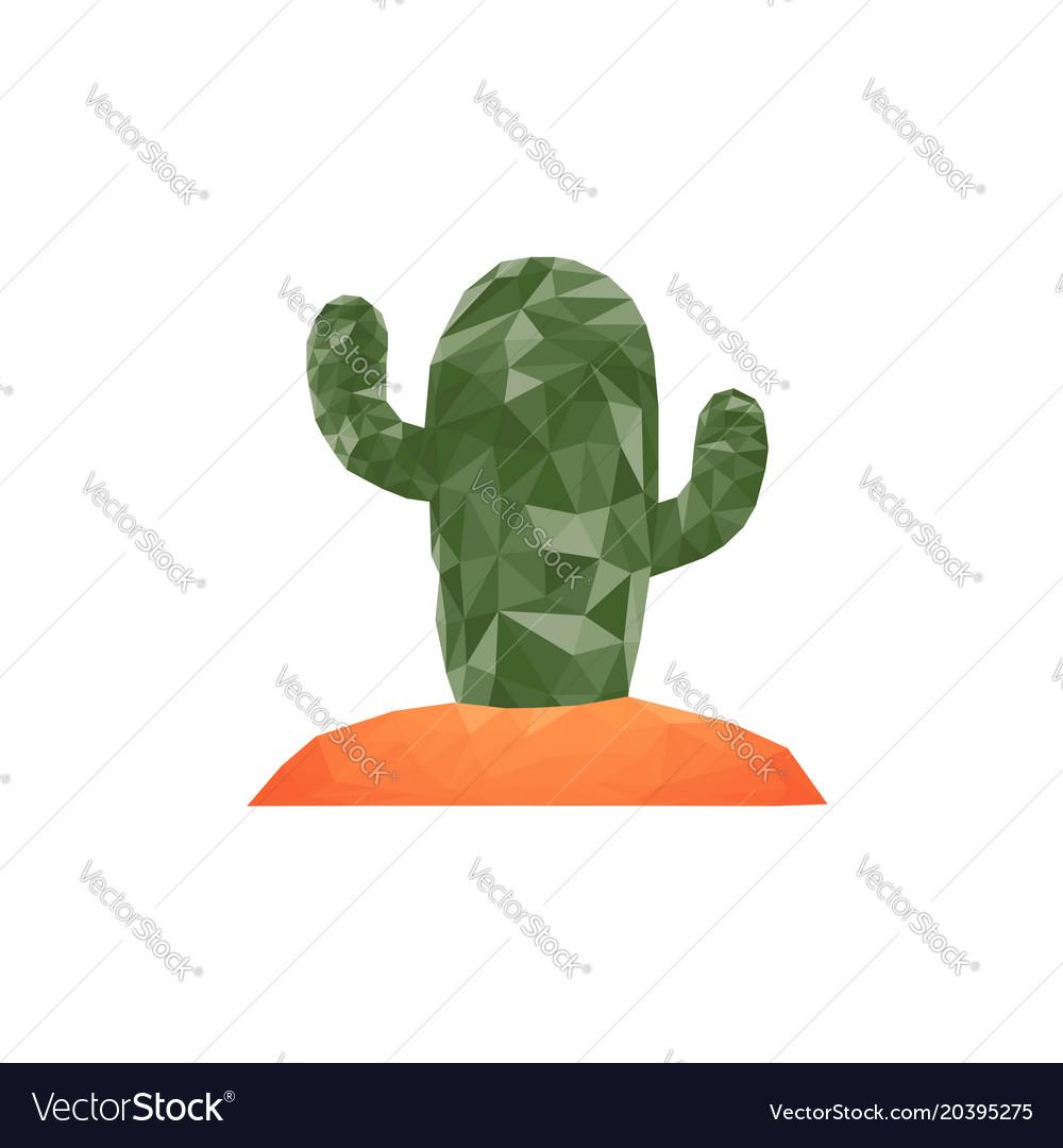 Cactus desert plant prickly plant thorny
