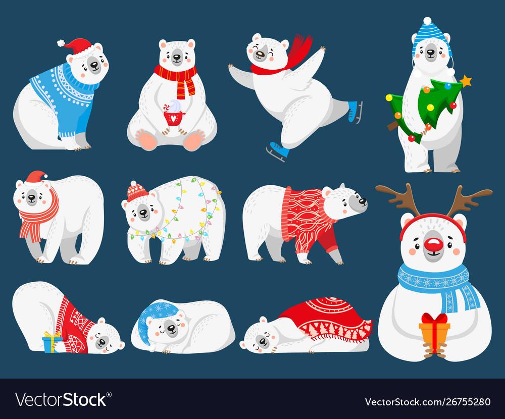 Christmas polar bears arctic bear with new year