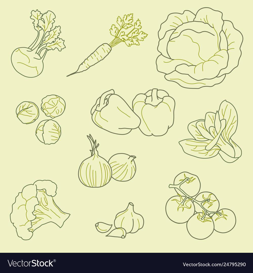 Set hand-drawn vegetables organic healthy