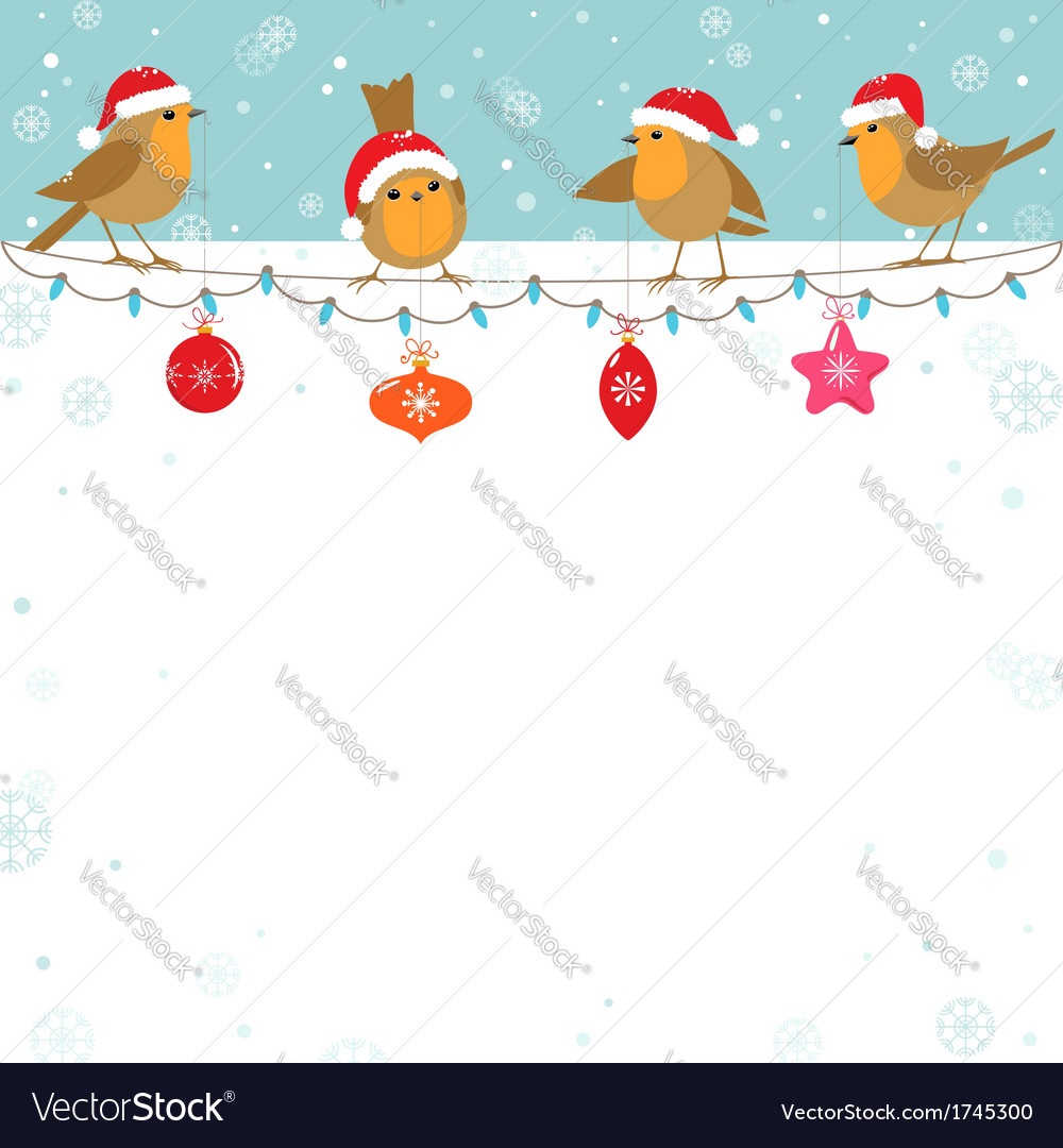 Christmas Bird.Christmas Birds