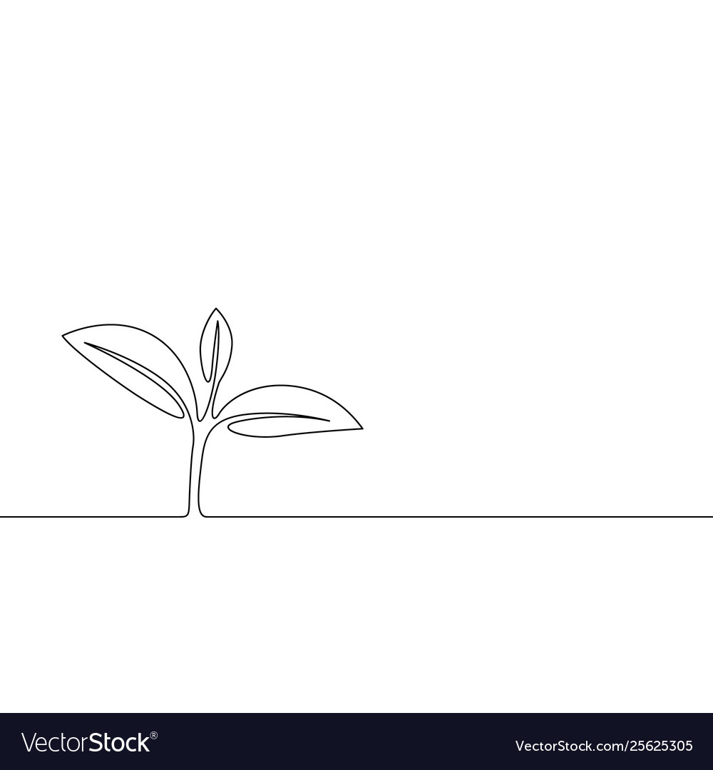 Continuous one line growing sprout plant leaves