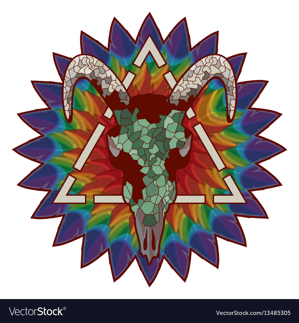 Skull of a bull on a colorful paint texture vector image