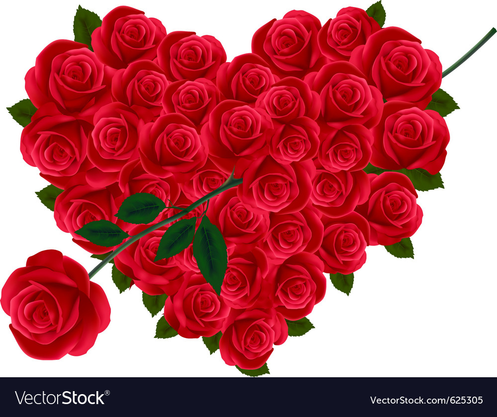 Valentine heart of roses royalty free vector image - Pics of roses and hearts ...