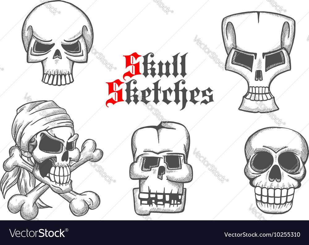 Skeleton skulls sketch icons set