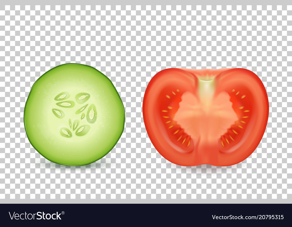 3d realistic slice juicy cucumber and