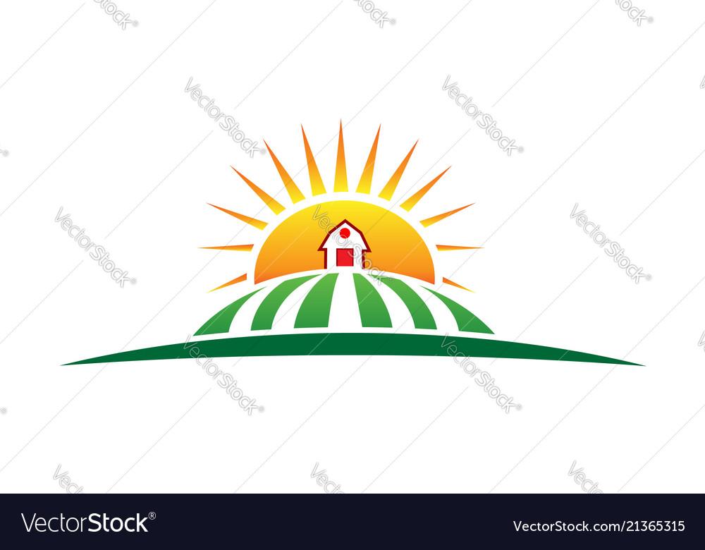 Sun and farm harvest label icon