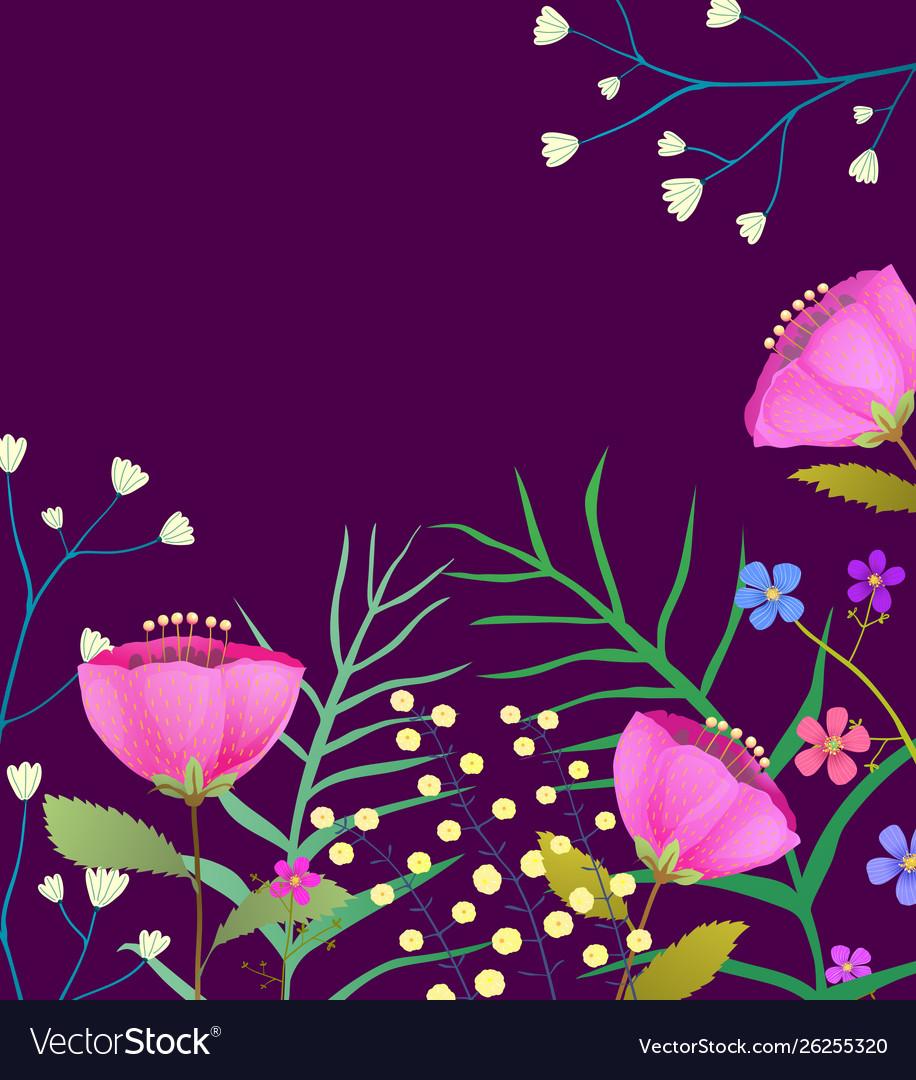 Blooming wildflowers flat frame on dark