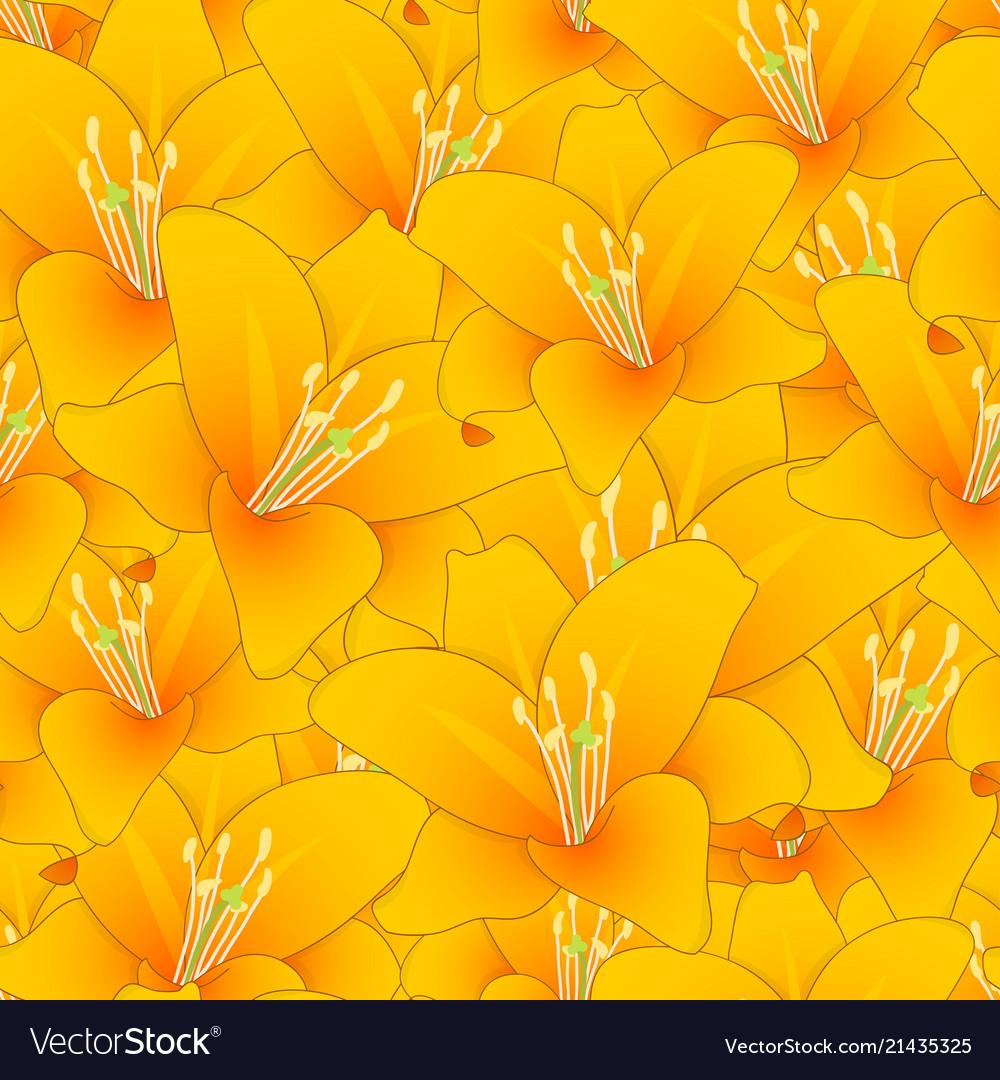 Orange lily seamless background