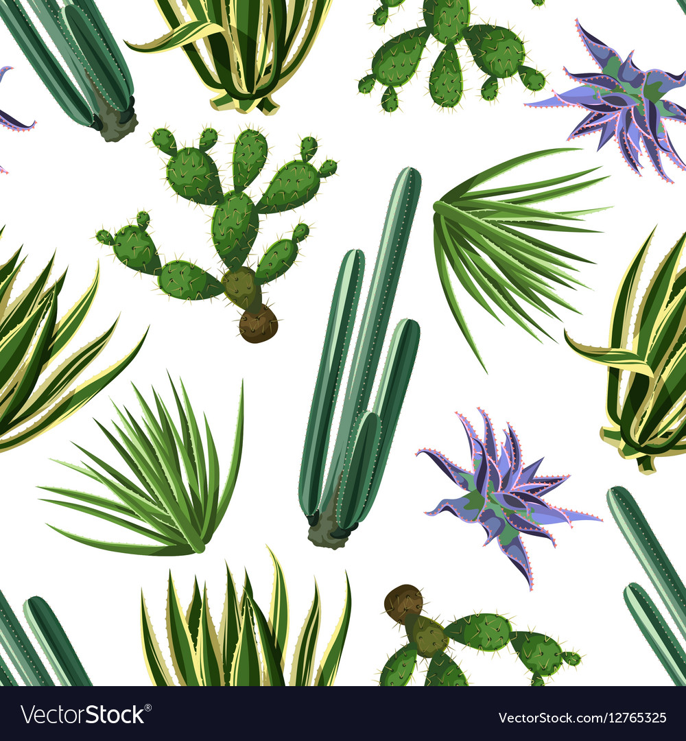 Seamless pattern with cactuses and succulents set