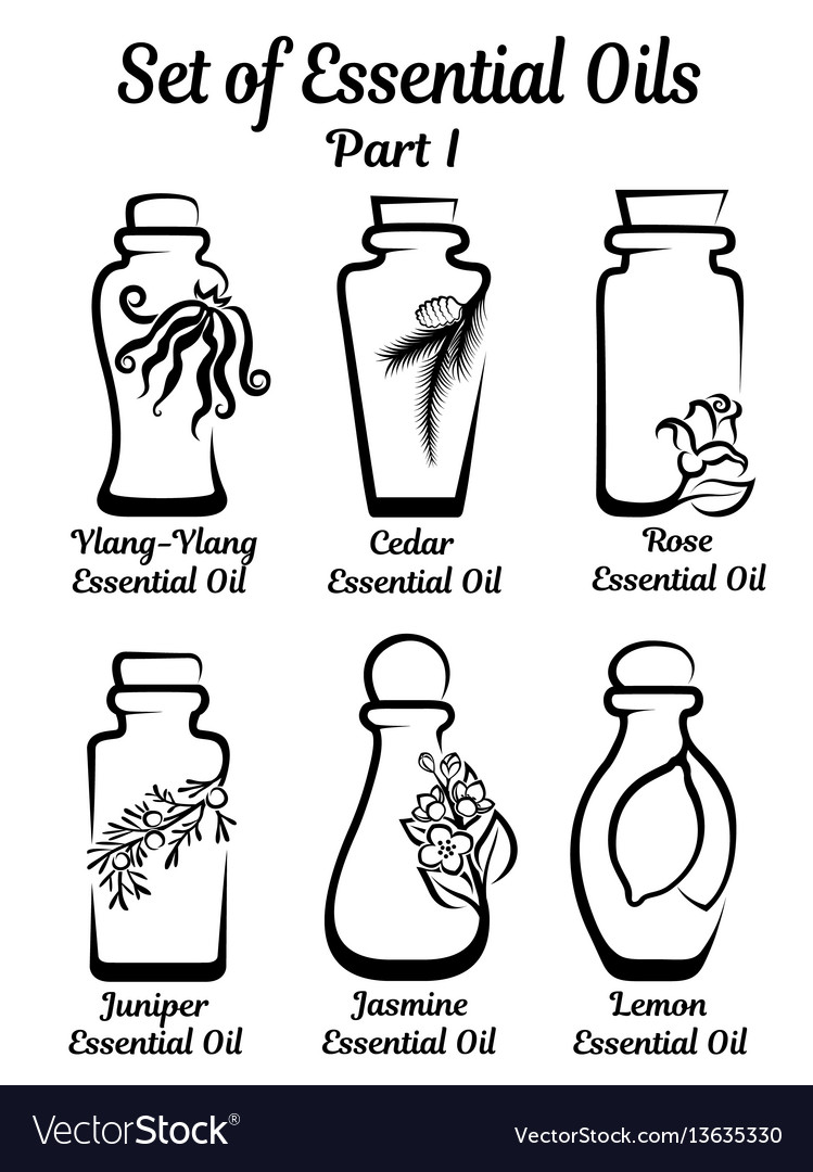 Set of stylized bottles with essential oils vector image