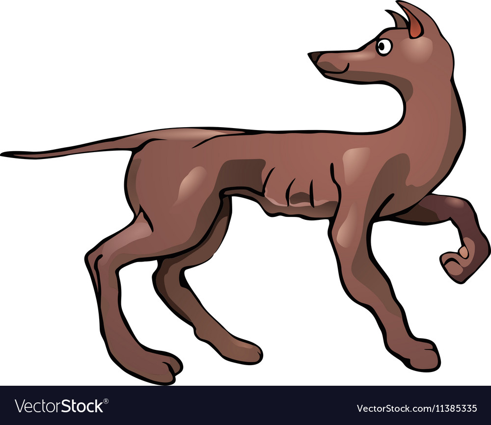 Looking back dog vector image