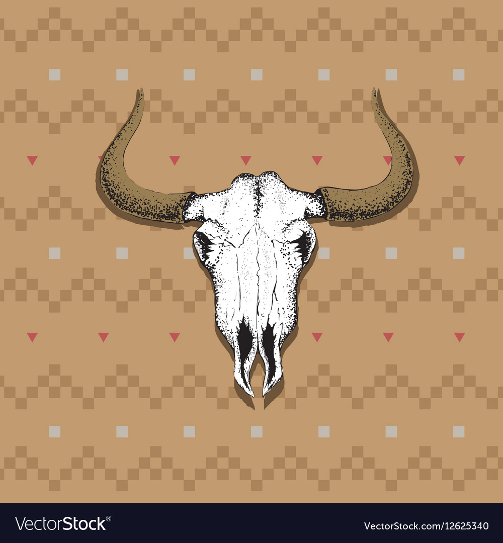 Skull of bull on old indian cloth