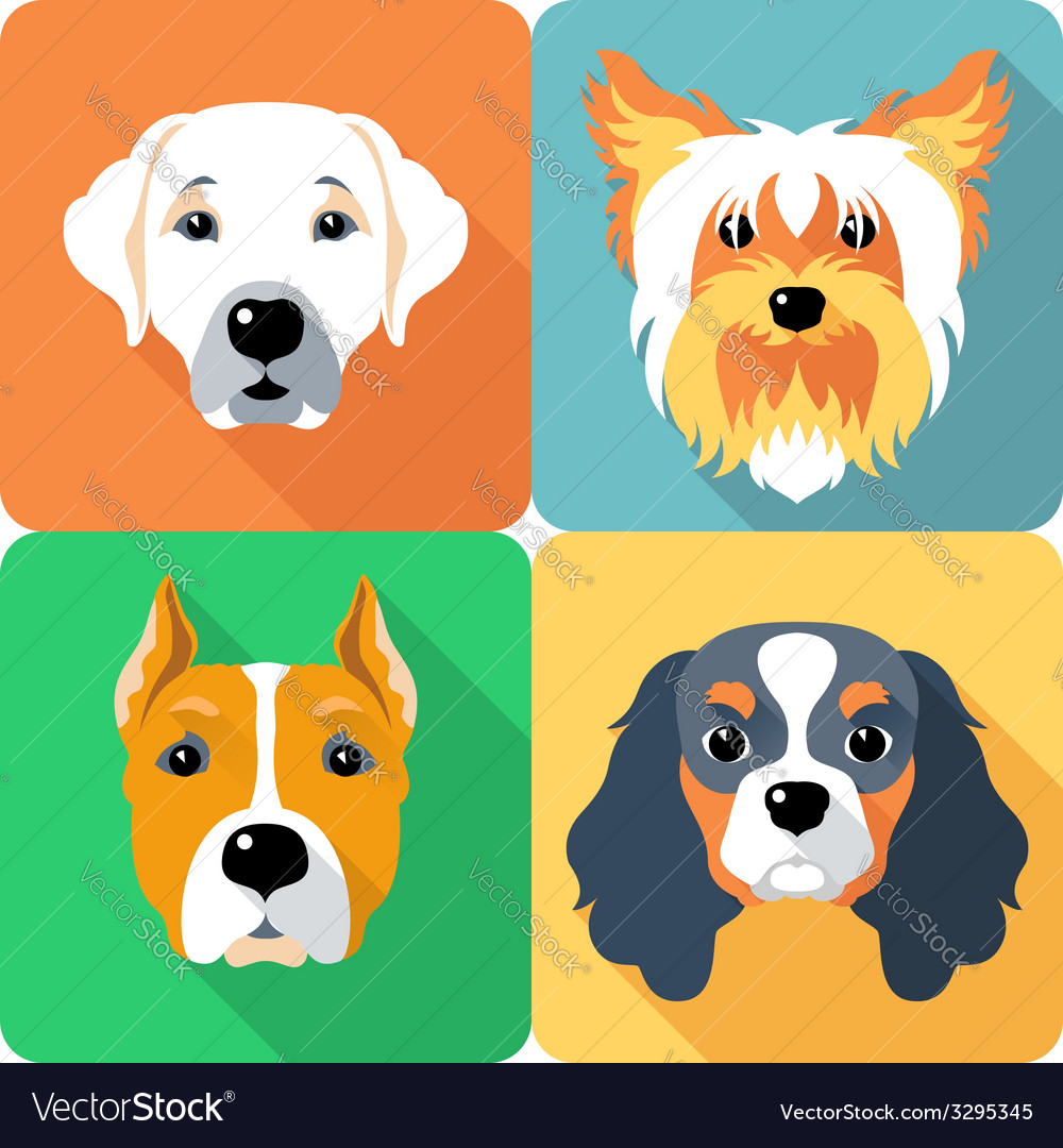Set icon flat design dogs different breed vector image