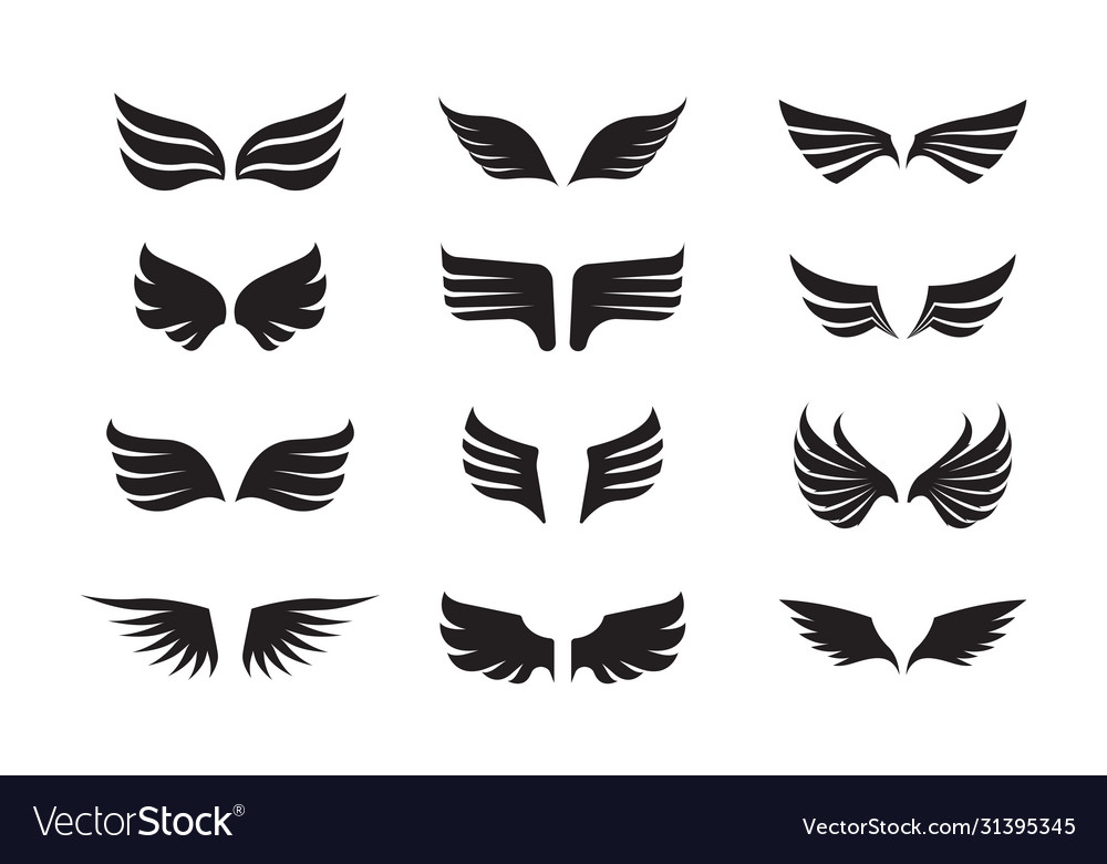 Wing feather set winged one is black the