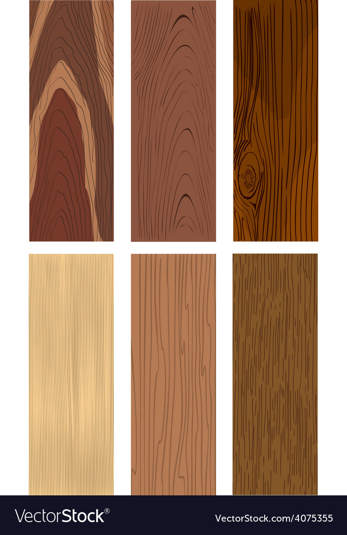 Photorealistic types of wood vector image