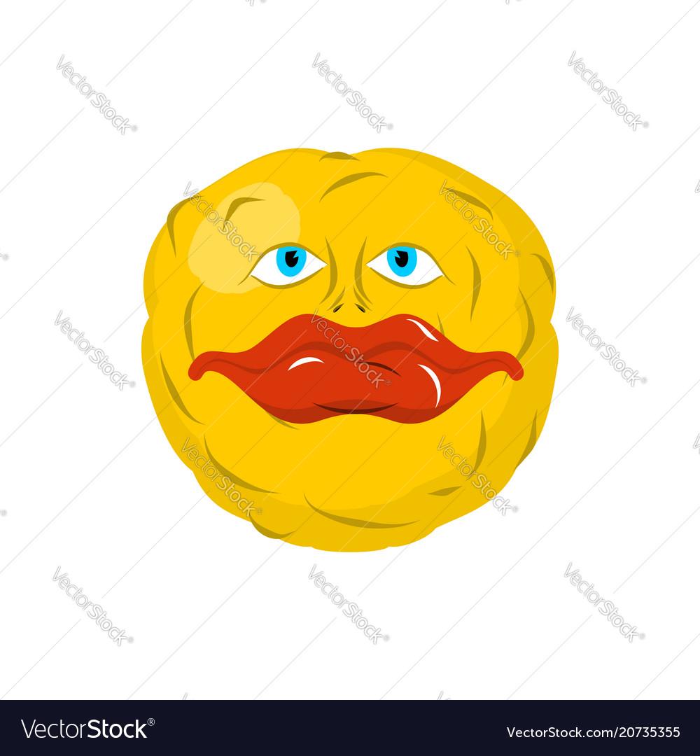 Smiling emoticon crazy emoji happy is an emotion vector image
