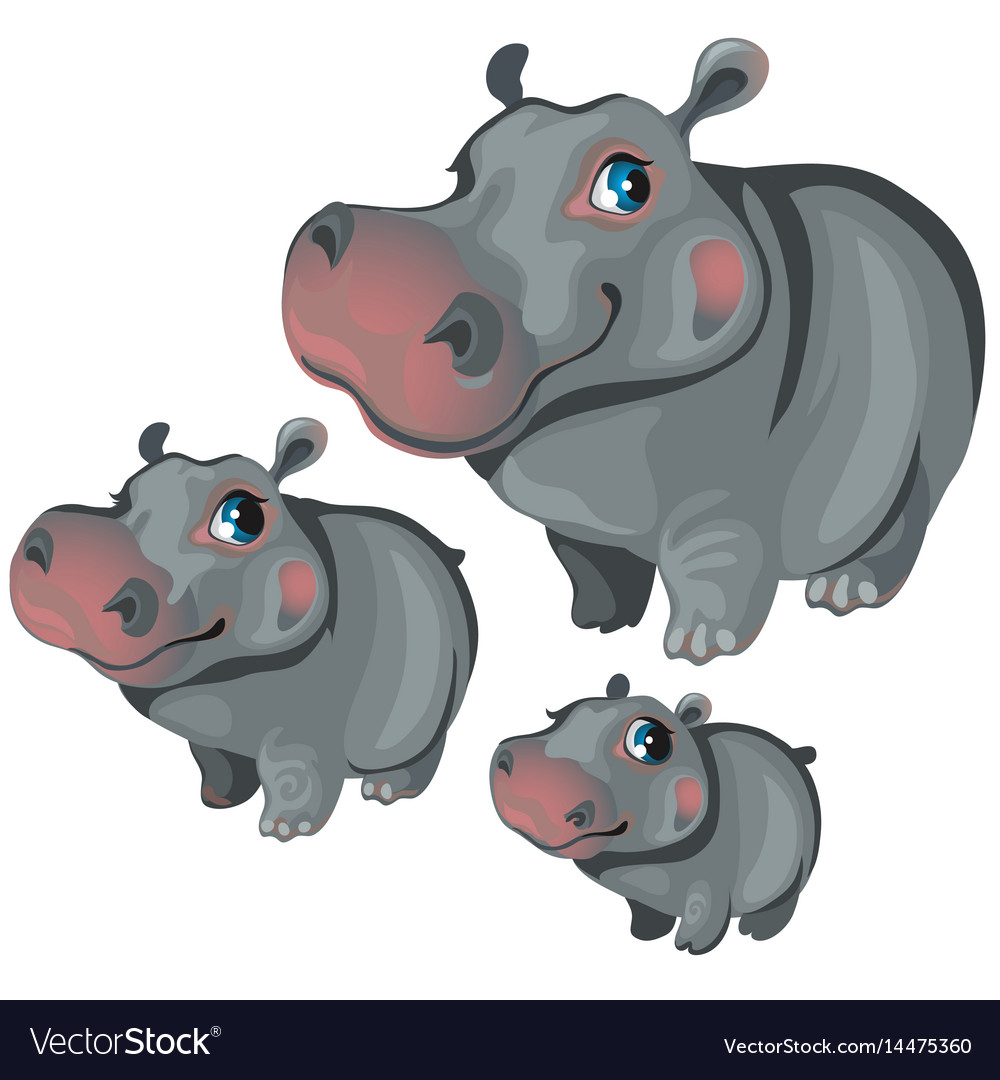 Cartoon hippo on white background animals