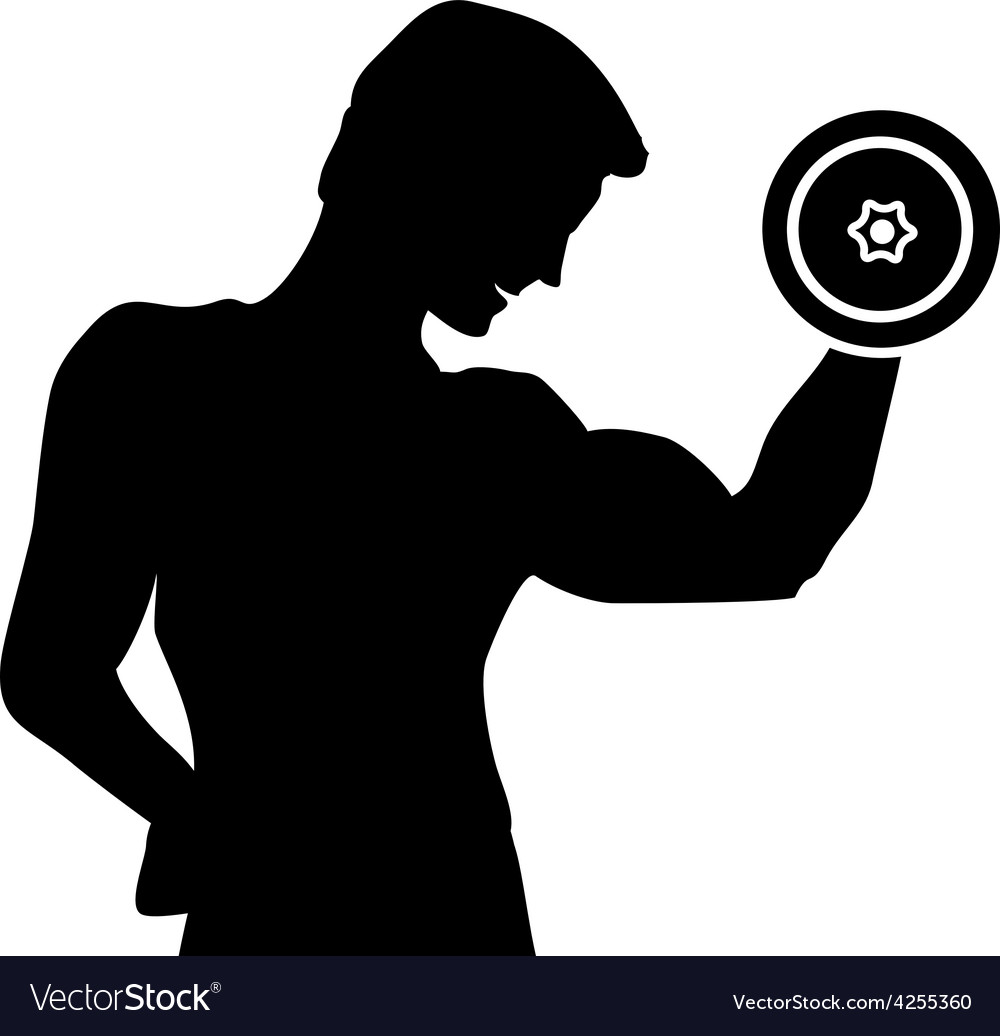 Silhouette of a man doing exercises with dumbbells vector image