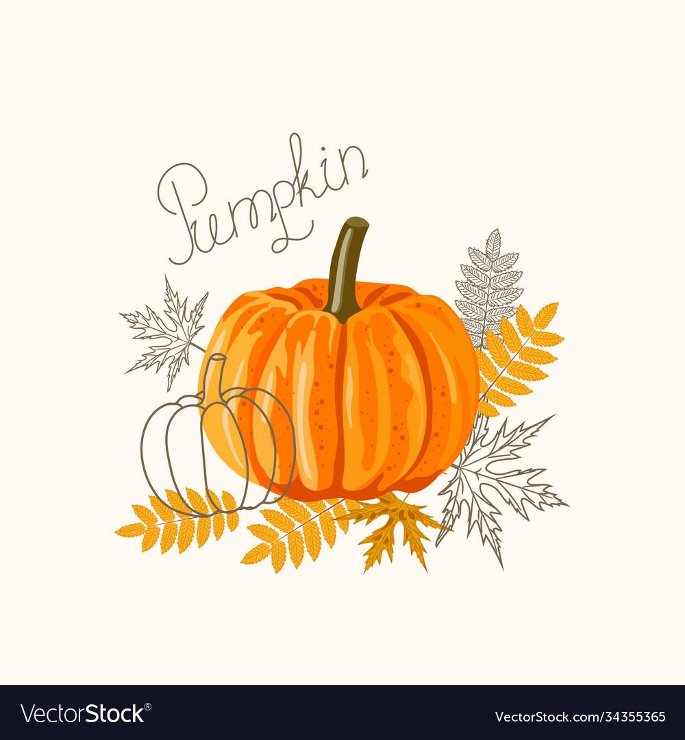 An orange big pumpkin with autumn leaves