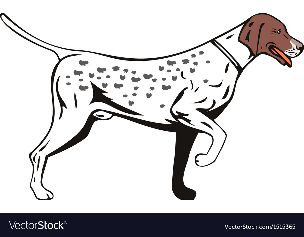 Dog Pointer Side View Retro vector image