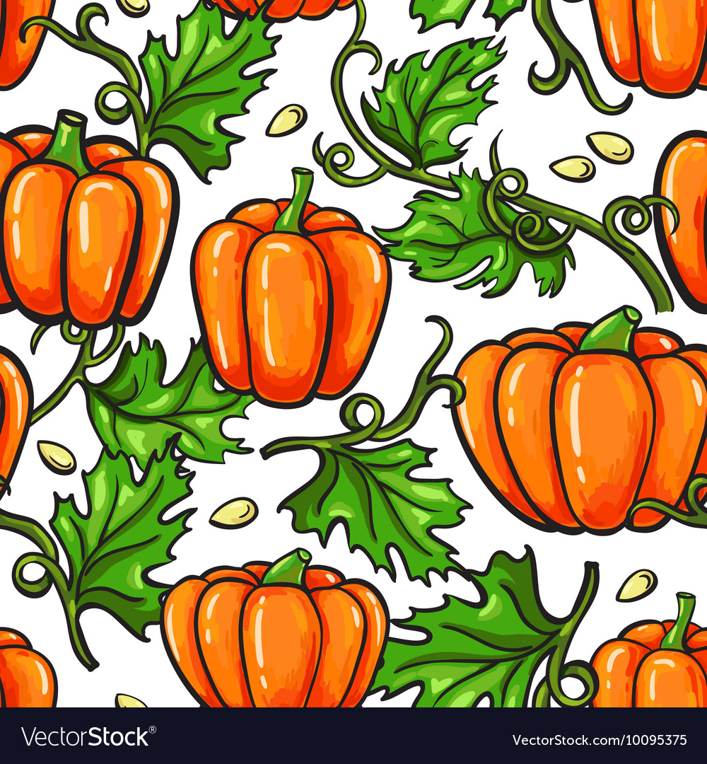 Pumpkin seamless pattern drawing Isolated