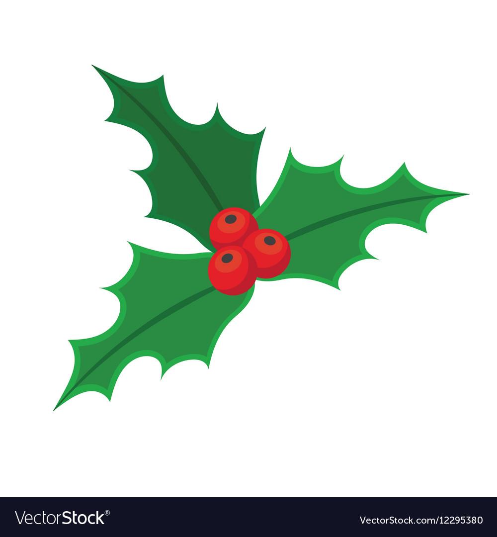 Christmas Holly Vector.Holly Berry Christmas