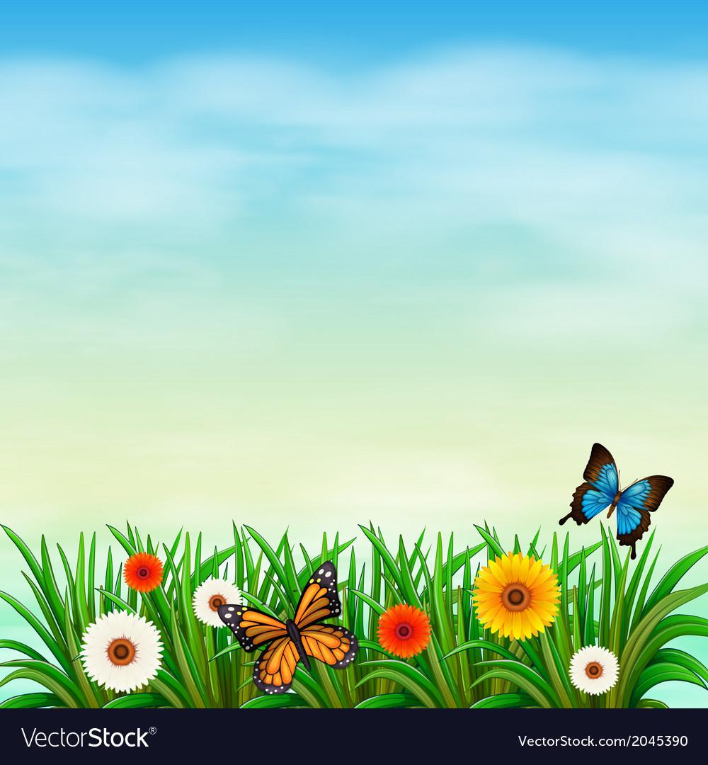 Flower Garden With Butterflies