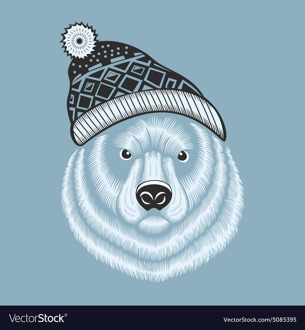 Bear hipster in knitted hat with