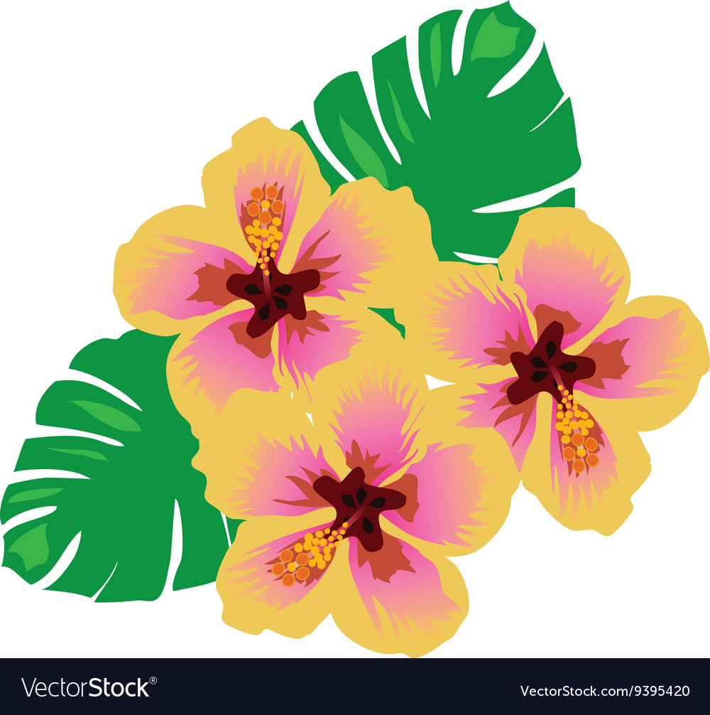 Hawaii flowers royalty free vector image vectorstock hawaii flowers vector image izmirmasajfo