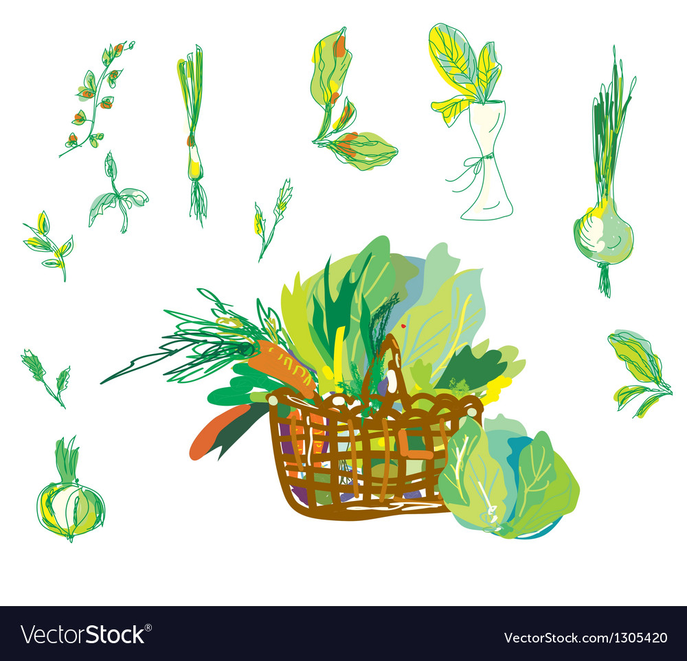 Vegetables and greens set with basket