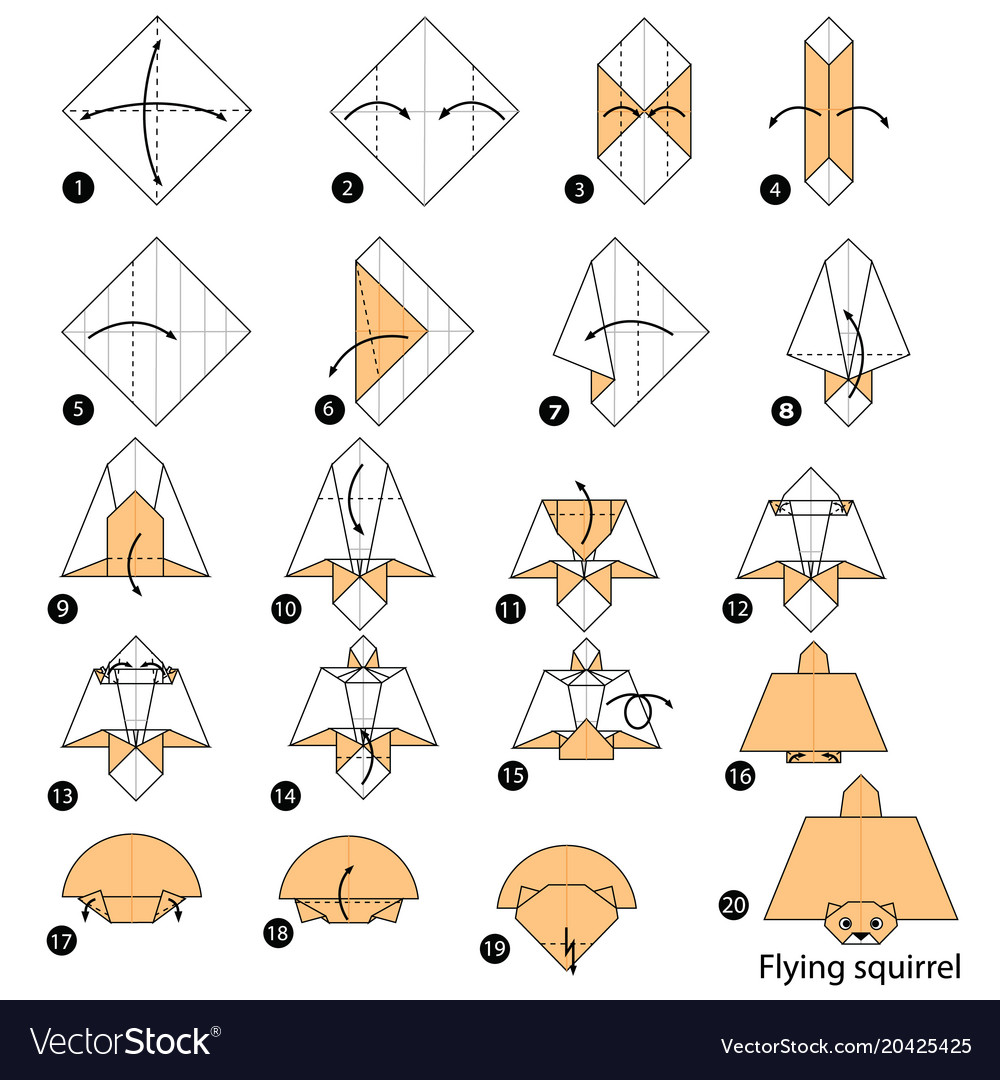 Make Origami A Flying Squirrel Vector Image