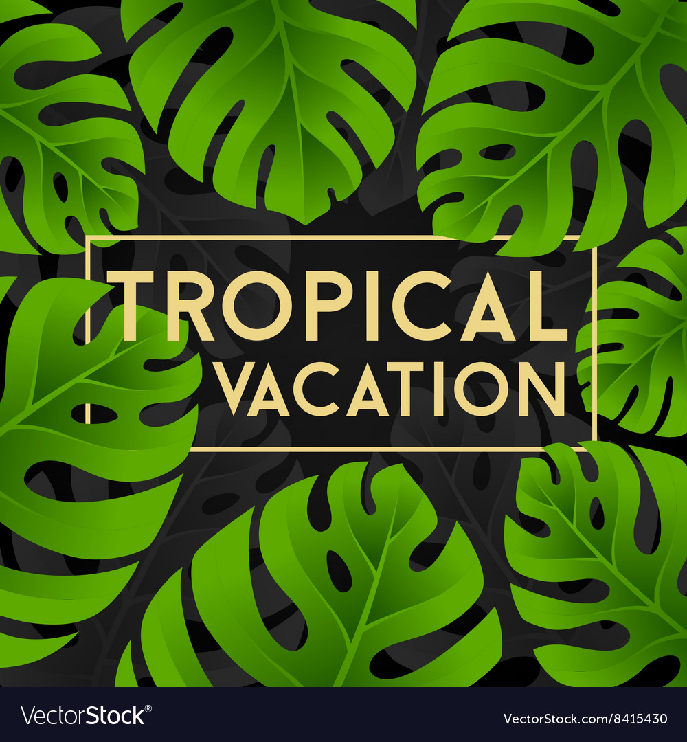 Tropical vacation card with monstera leaves
