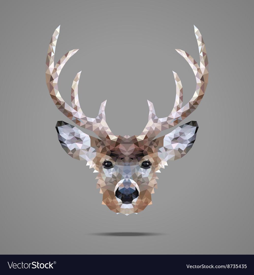 Deer low poly portrait
