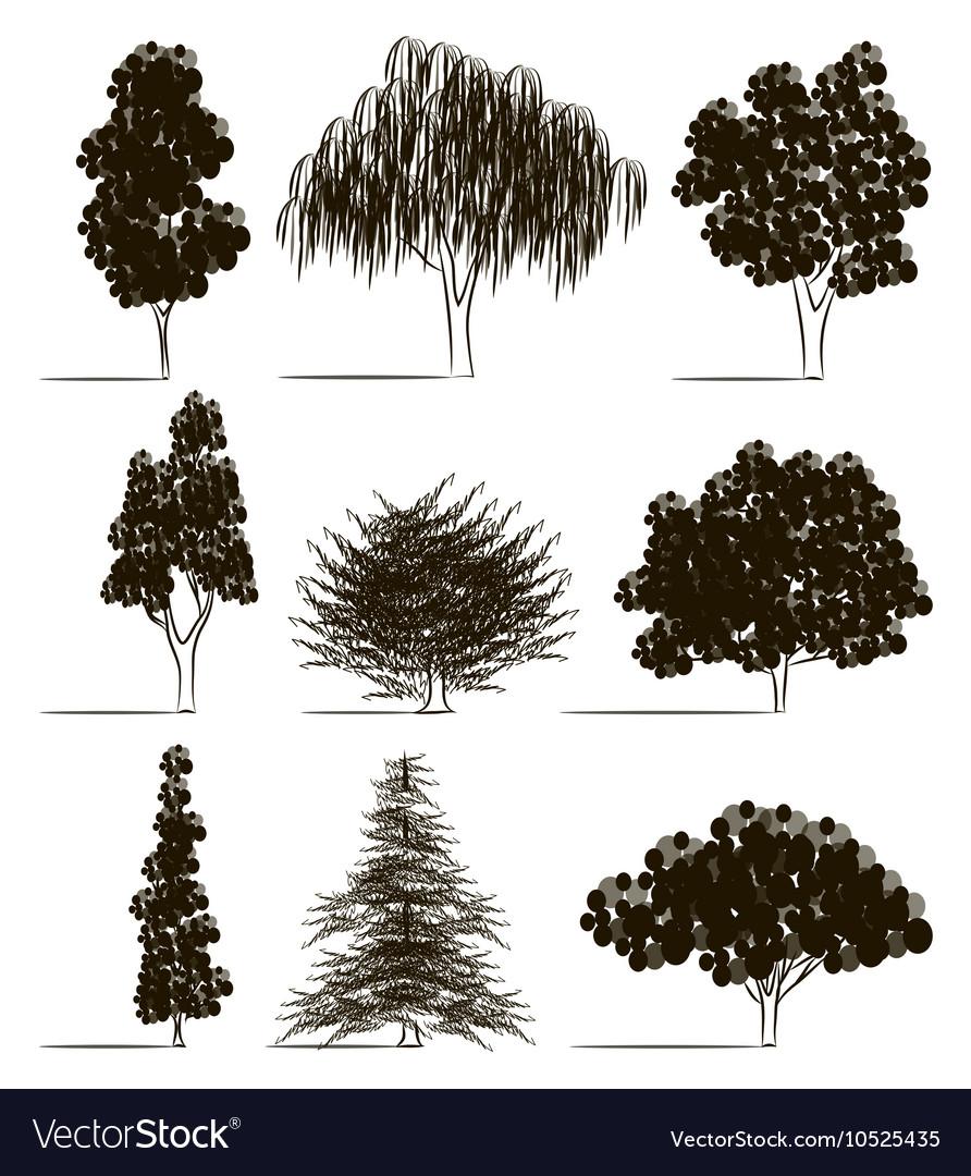 Trees sketch set vector image