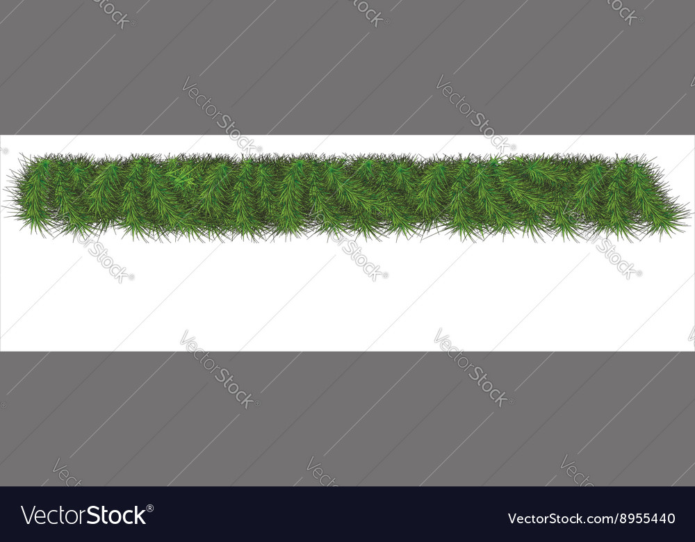 Border of New Year branch of pine