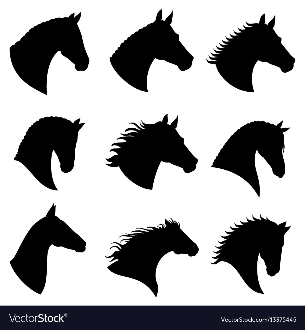 Horse Head Silhouettes Royalty Free Vector Image