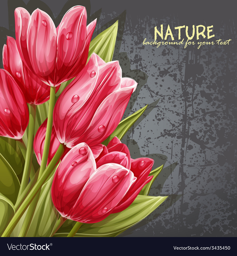 Preview background bouquet pink tulips for your