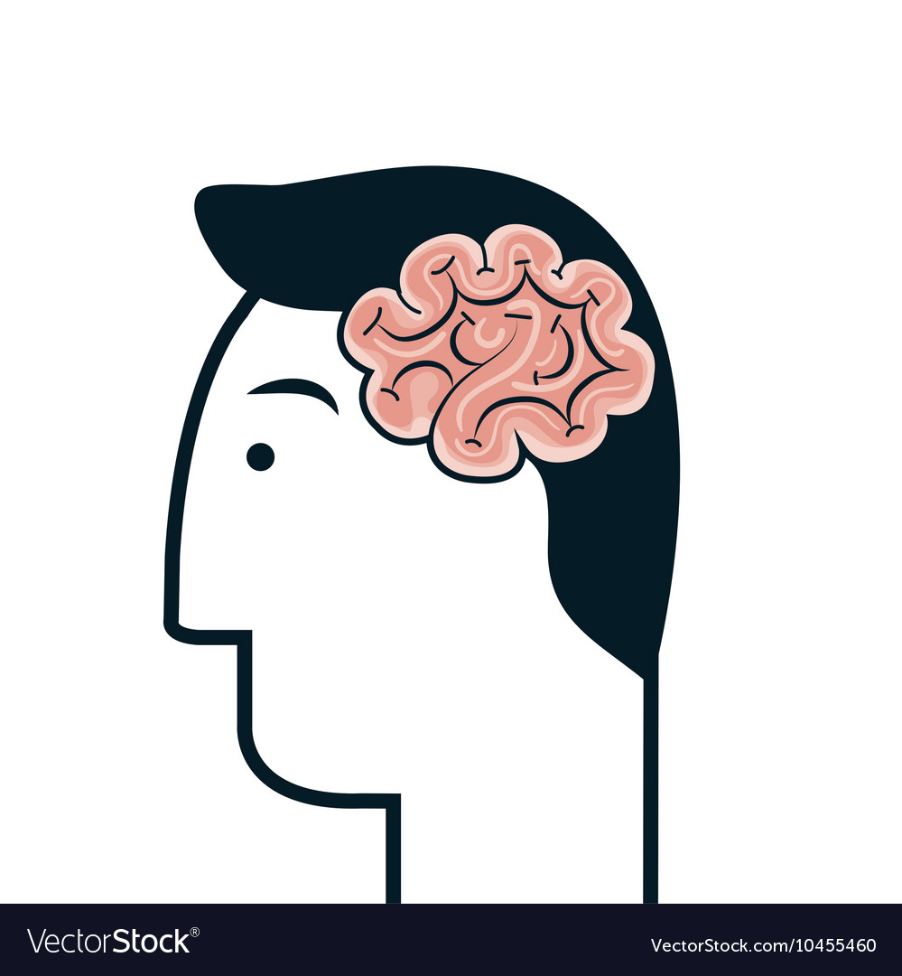 Head human profile think icon vector image