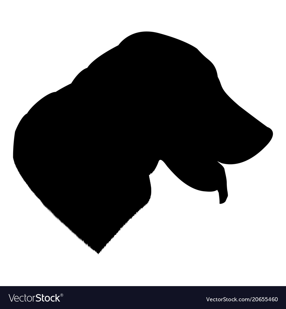 Labrador dog silhouette isolated on white