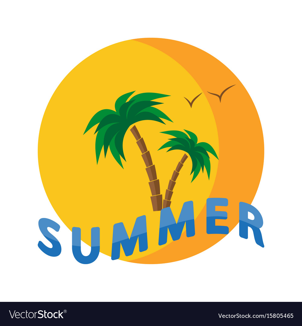 Palm trees beach seashells sunset and waves