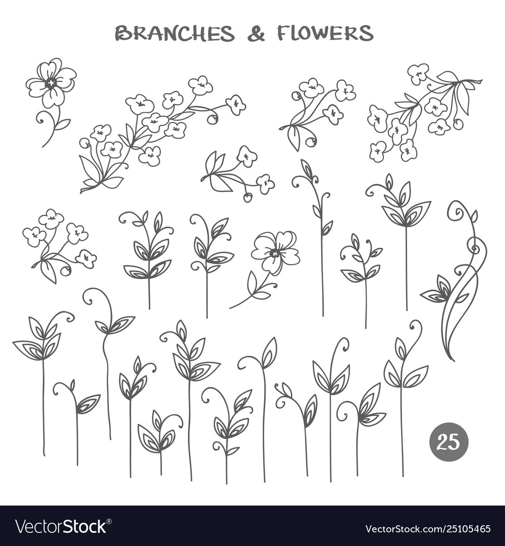 Set branches hand drawn