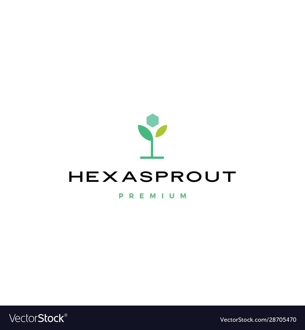 Hexa sprout leaf hexagon logo icon