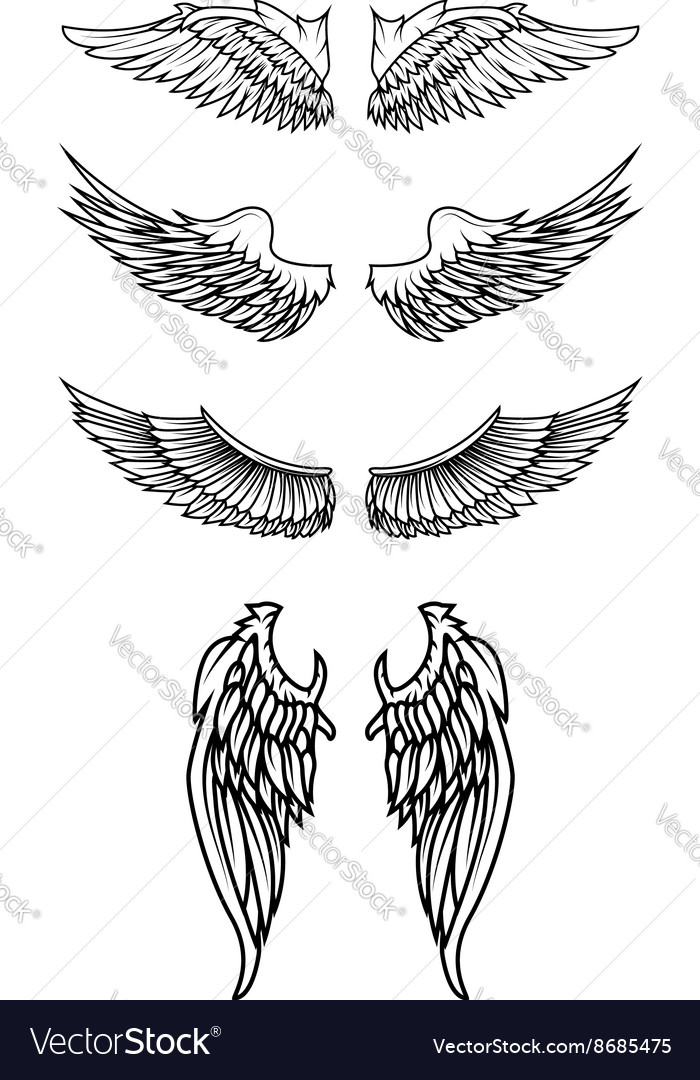 Set of the wings in