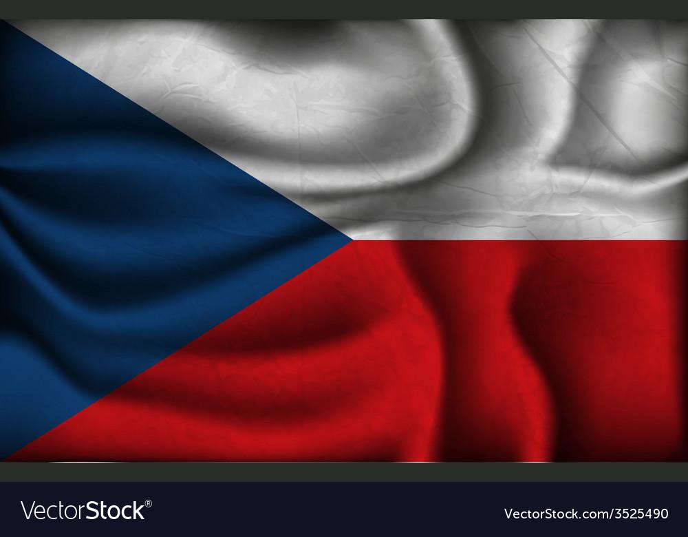 Crumpled flag of Czech Republic on a light vector image