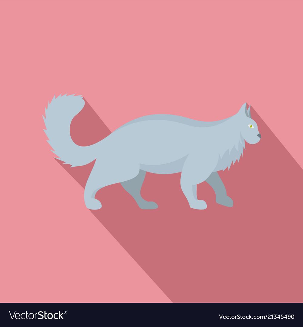 Grey cat icon flat style