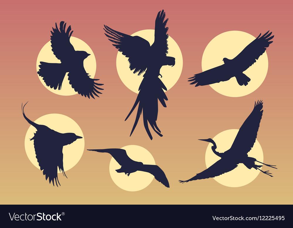 Bird in flight silhouette