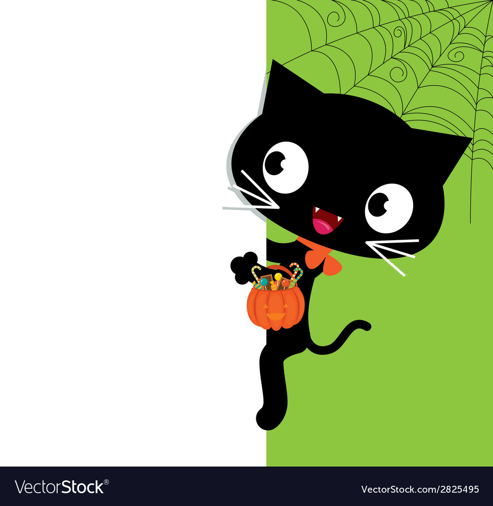 Halloween black cat and a white banner