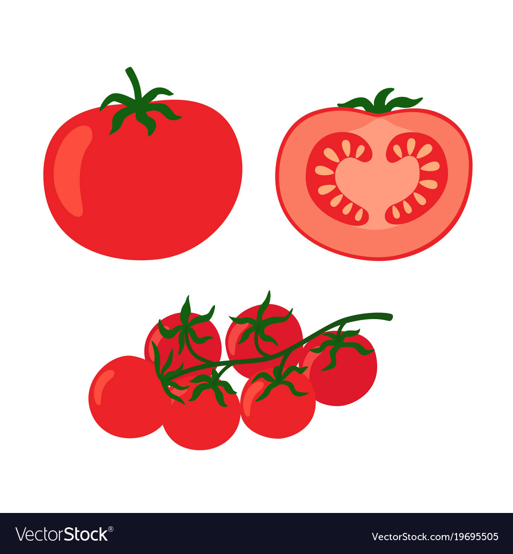 Collection fresh red tomatoes